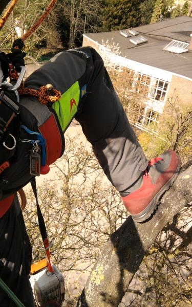 new arrivals wide varieties best shoes Meindl Airstream Test Drive - Climbers talk - Arbtalk | The ...