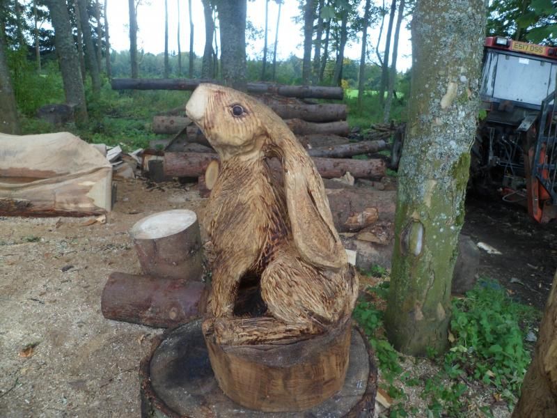 Hare chainsaw carving forum arbtalk the social