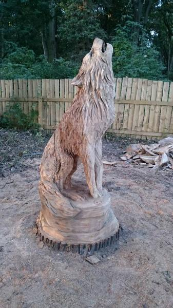 Wolves for national trust in wrexham chainsaw carving forum