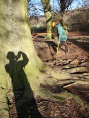 NuttyArb-Airspade investigation on Beech with Meripilus, Hampstead Heath Dec 09.