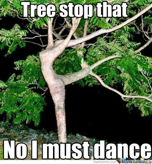 Tree-Meme-Tree-stop-that-no-i-must-dance.jpg