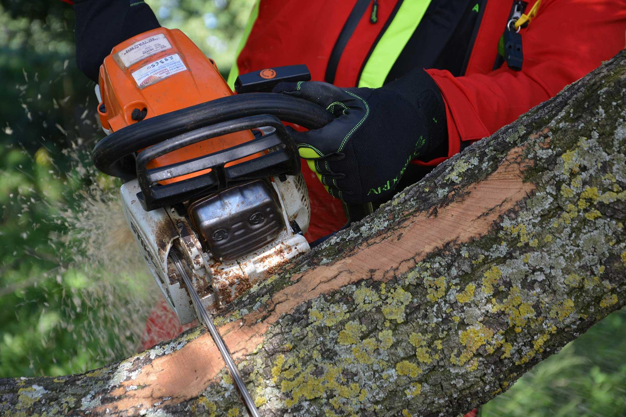 Guide to classifications of chainsaw protective wear