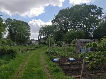 Plots 14 & 20, St Anne's Road Allotments