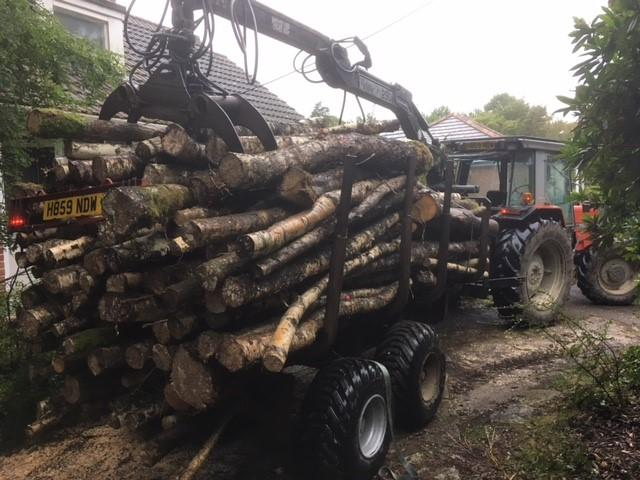 Trailer with firewood 2018.jpg